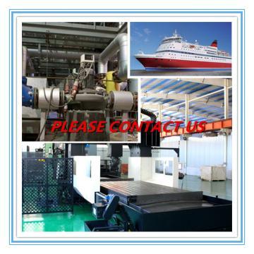Industrial Plain Bearing   EE424257DW/424405/424407D