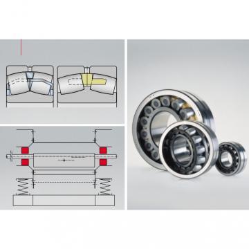 Toroidal roller bearing  239/710-K-MB + AH39/710-H
