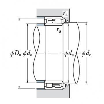 NSK Double Row Bearing  NN3021